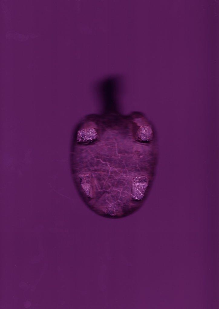 1-Violet.jpeg